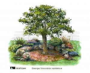 garden 2013 02