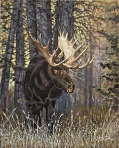 Moose - Oct 2019